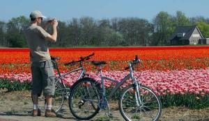 Alquilar una bicicleta nos permite una mayor movilidad por los alrededores del parque